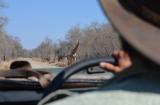 Zimbabwe: Hwange NationalPark