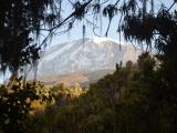 Tanzania: Mt. Kilimanjaro