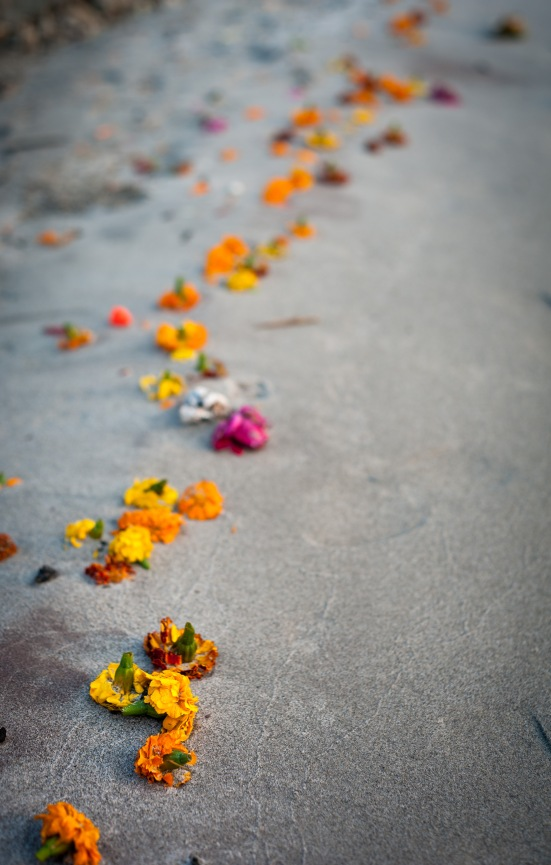 EZH Flower Offerings